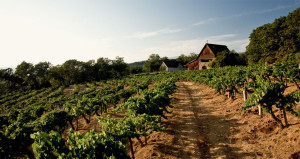 Hanzell Winery