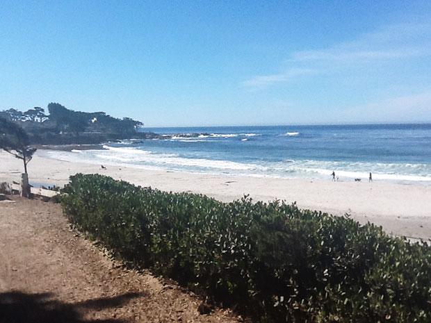 Carmel-Beach-with-Dogs