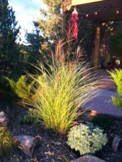 Santa-Fe-New-Mexico-House-garden
