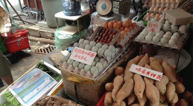 greenish-tinged-eggs