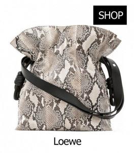 Loewe---handbag