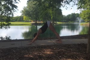 Downward-Facing Dog Pose (Adho Mukha Svanasana)
