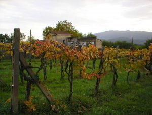northern Tuscany