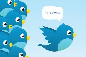 twitter beginners