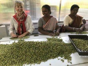 Taste, fresh spices - trip to India