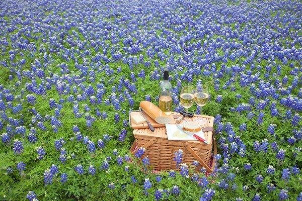Texas wineries