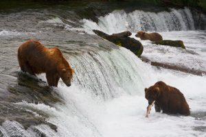 Alaskan Vacation Feature