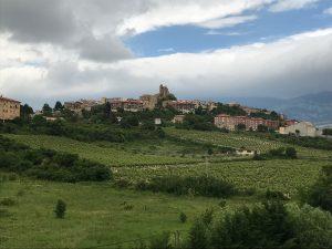 Rioja Alavesa Wine Region