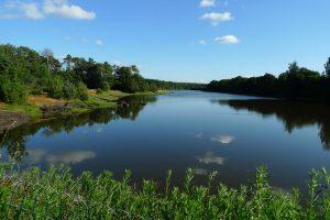 Vivian's Lake