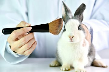 Cruelty Free Makeup Feature
