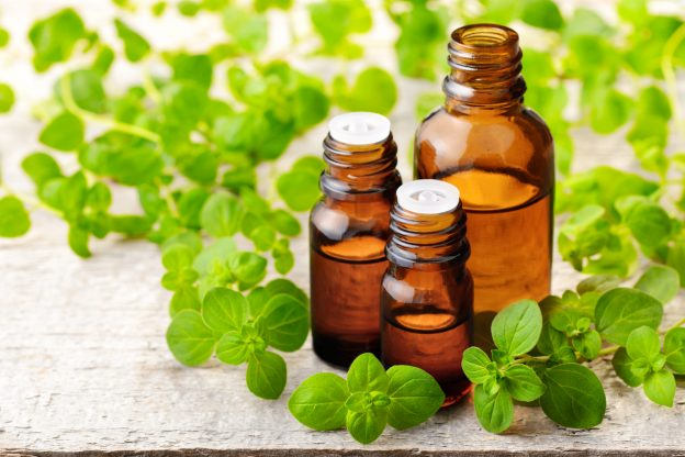 Oregano Essential Oil Feature