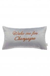 Besties-Ted Baker London Wake Me for Champagne Velvet Accent Pillow