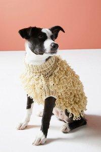 Curly Dog Sweater