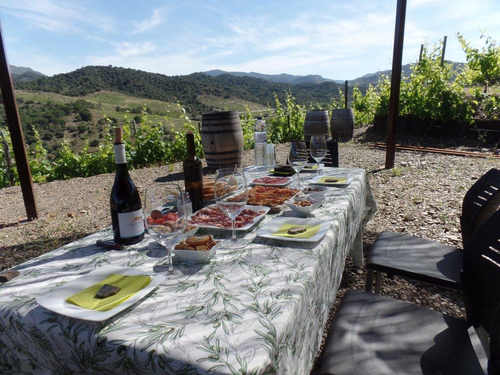"""""""Breakfast in the Vineyard"""" at Mas Perinet"""