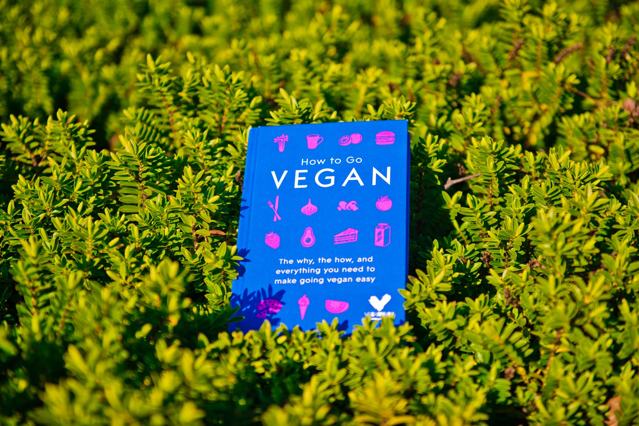 Veganuary-How to Go Vegan