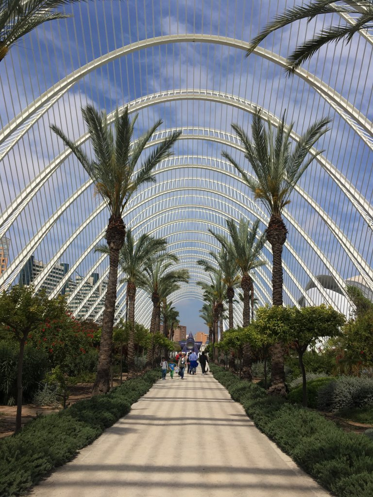 TOP 5 THINGS TO DO IN VALENCIA, SPAIN