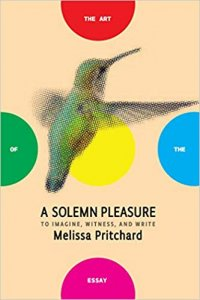 A Solemn Pleasure- To Imagine Witness and Write -The Art of the Essay by Melissa Pritchard