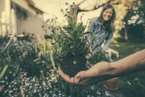 Organic gardening is good for the soul.