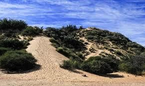 Sand boarding requires the proper hill to slide down.