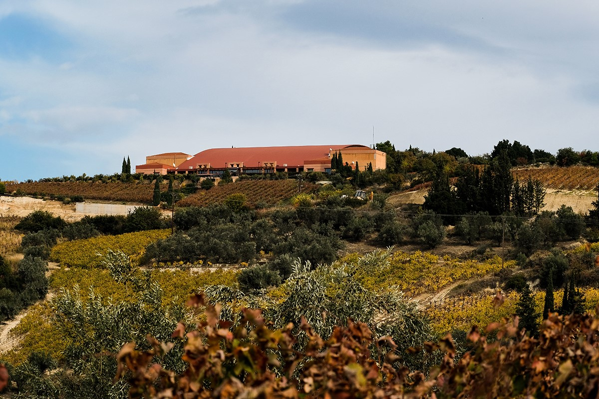 Photo provided by Semeli Winery, a vineyard producing Mediterranean Wines