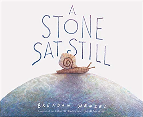 book lover gifts: A Stone Sat Still