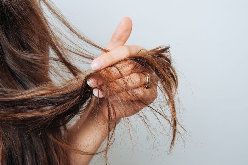 The Best Products for Dry Hair