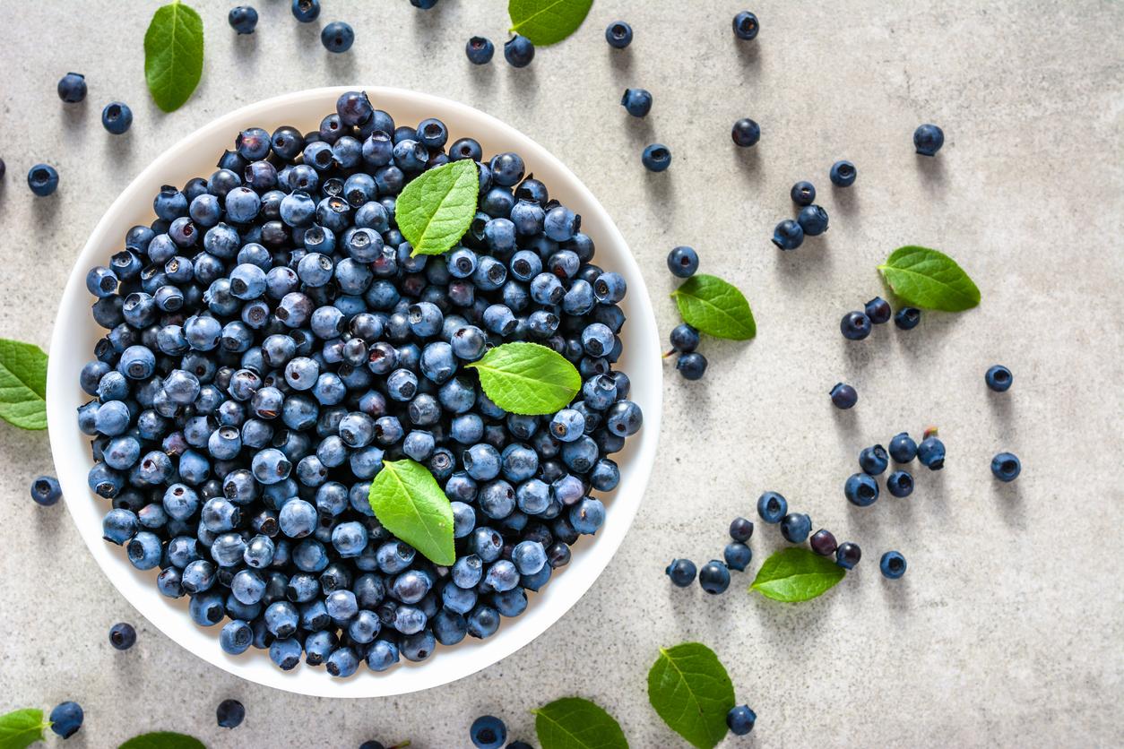 bilberries or blueberries