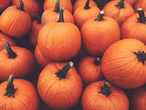 Pumpkin Skincare Products To Try This Autumn (And Beyond)