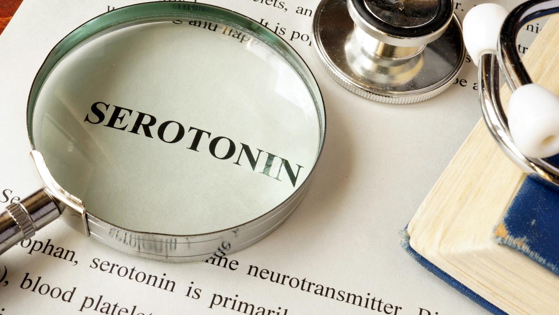 serotonin boosting foods