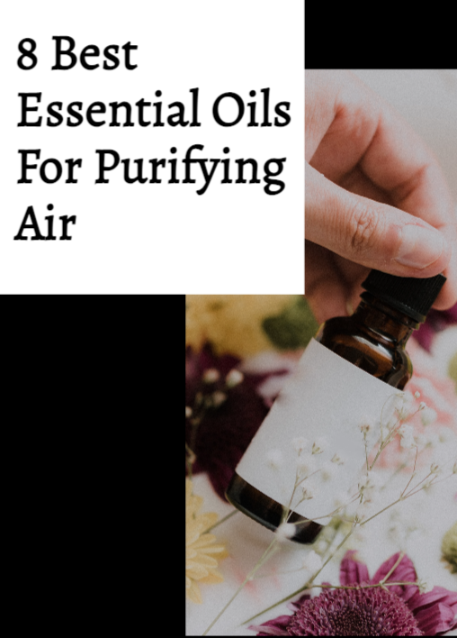 8 Best Essential Oils For Purifying Air