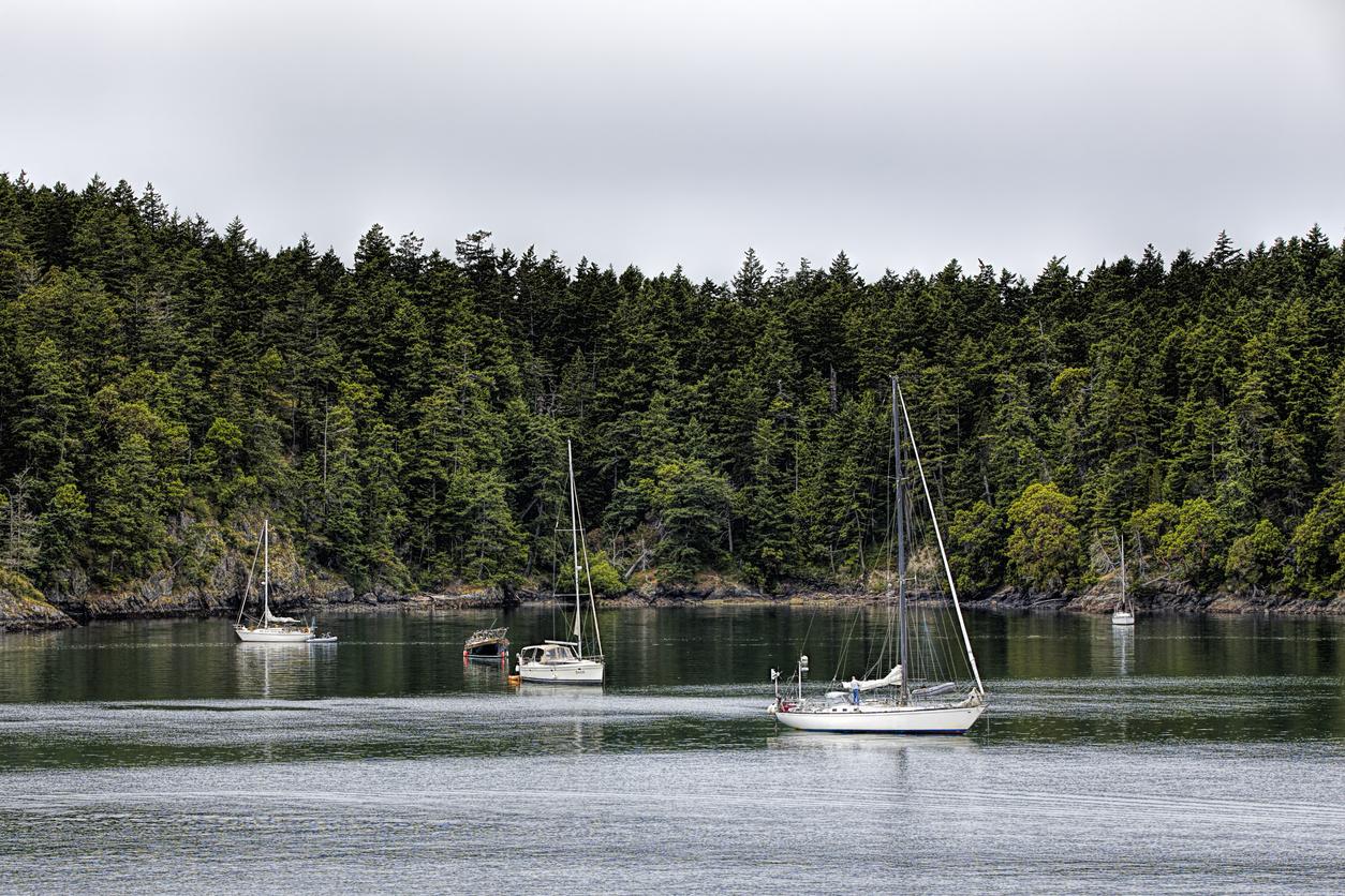 san juan sailing