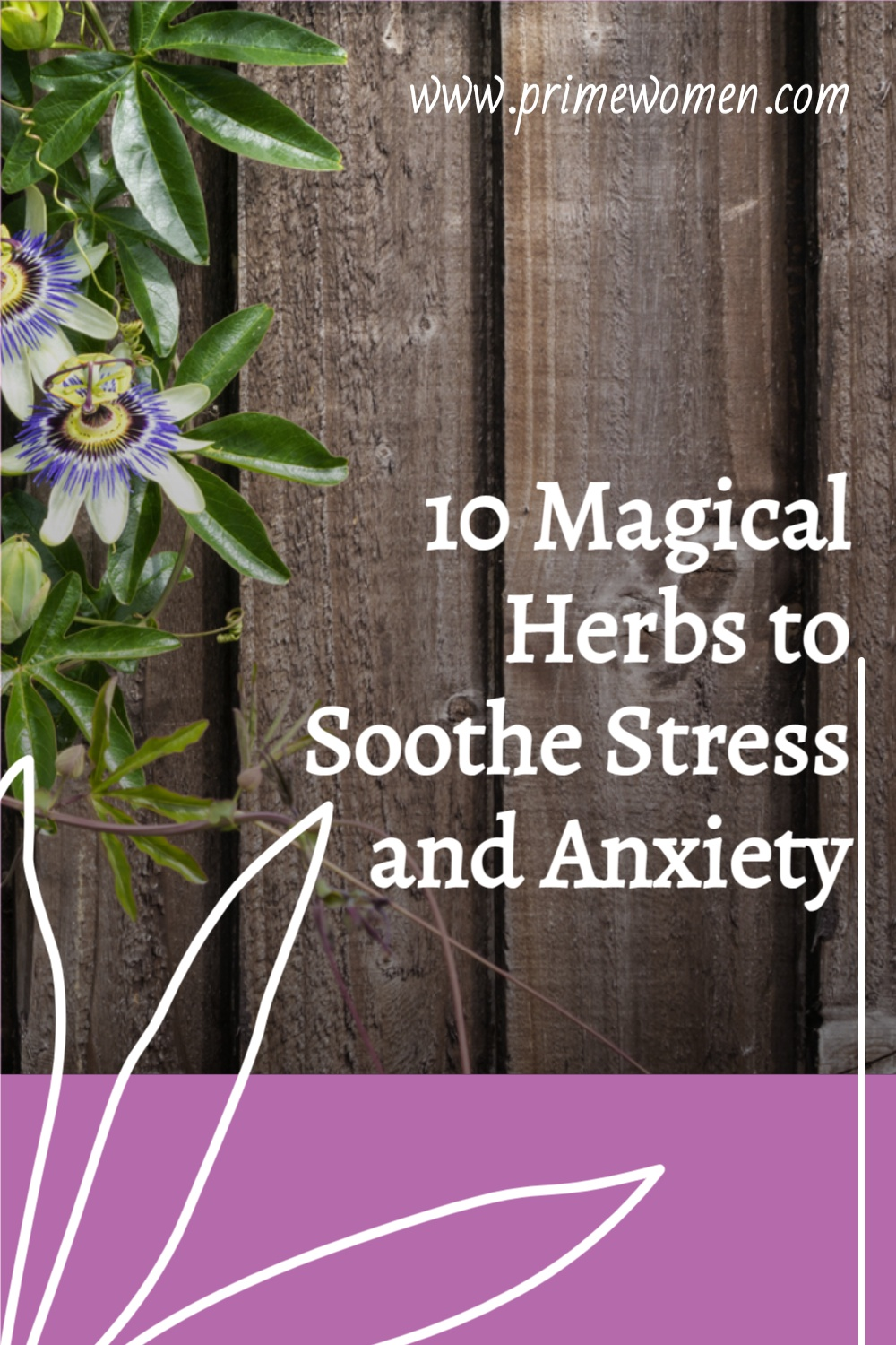 10 Magical Herbs to Soothe Stress and Anxiety
