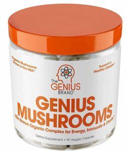 Genius mushrooms for cognitive health and immune boosting