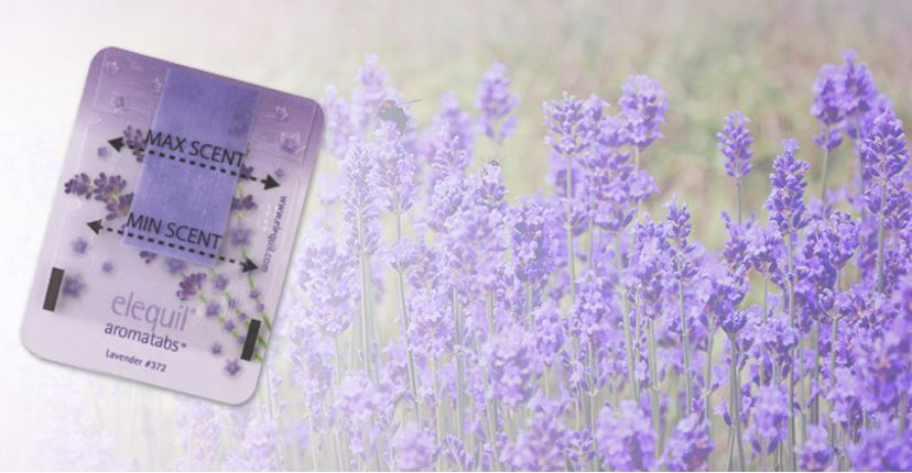 Elequil Lavender has a variety of uses.