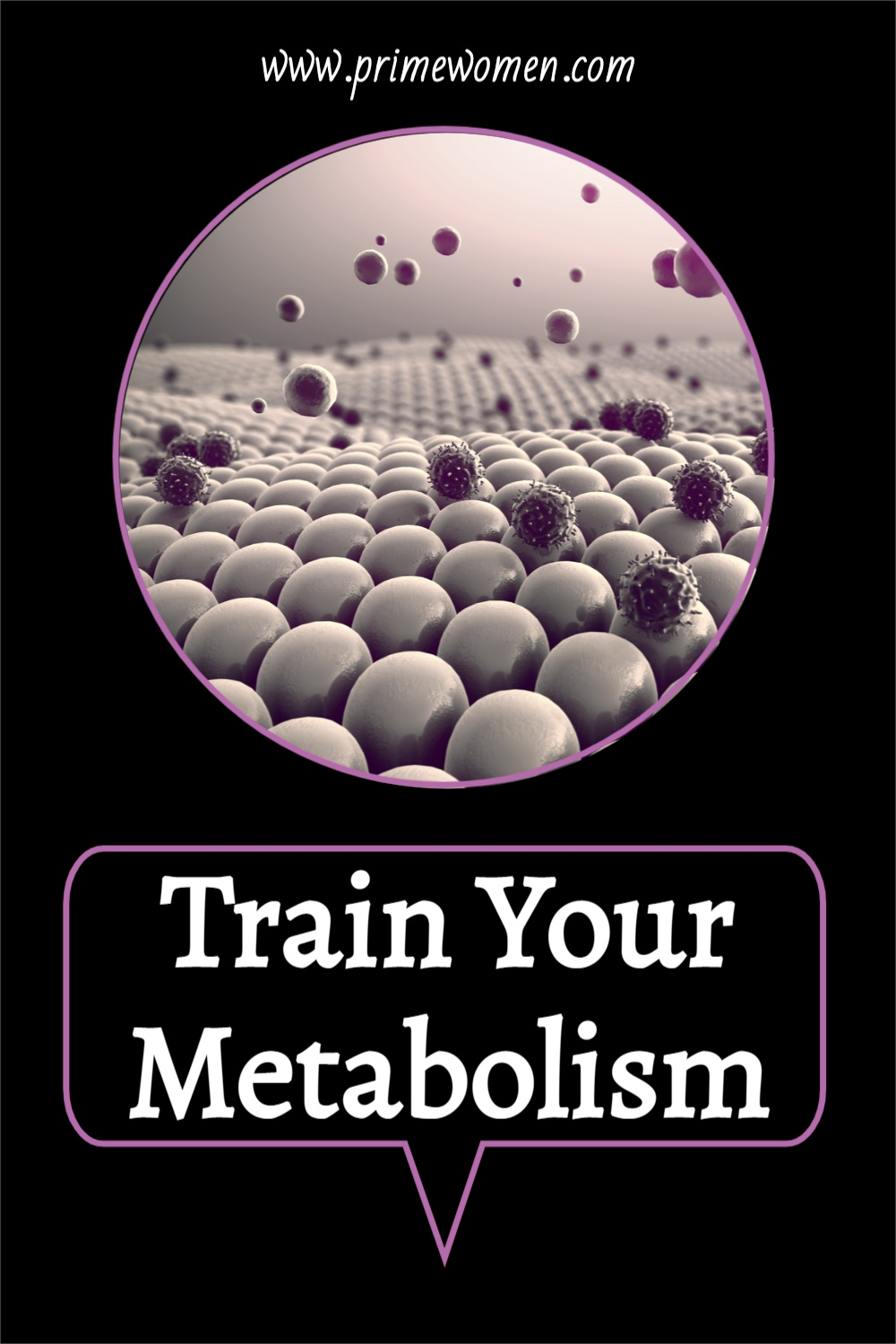 Train-Your-Metabolism