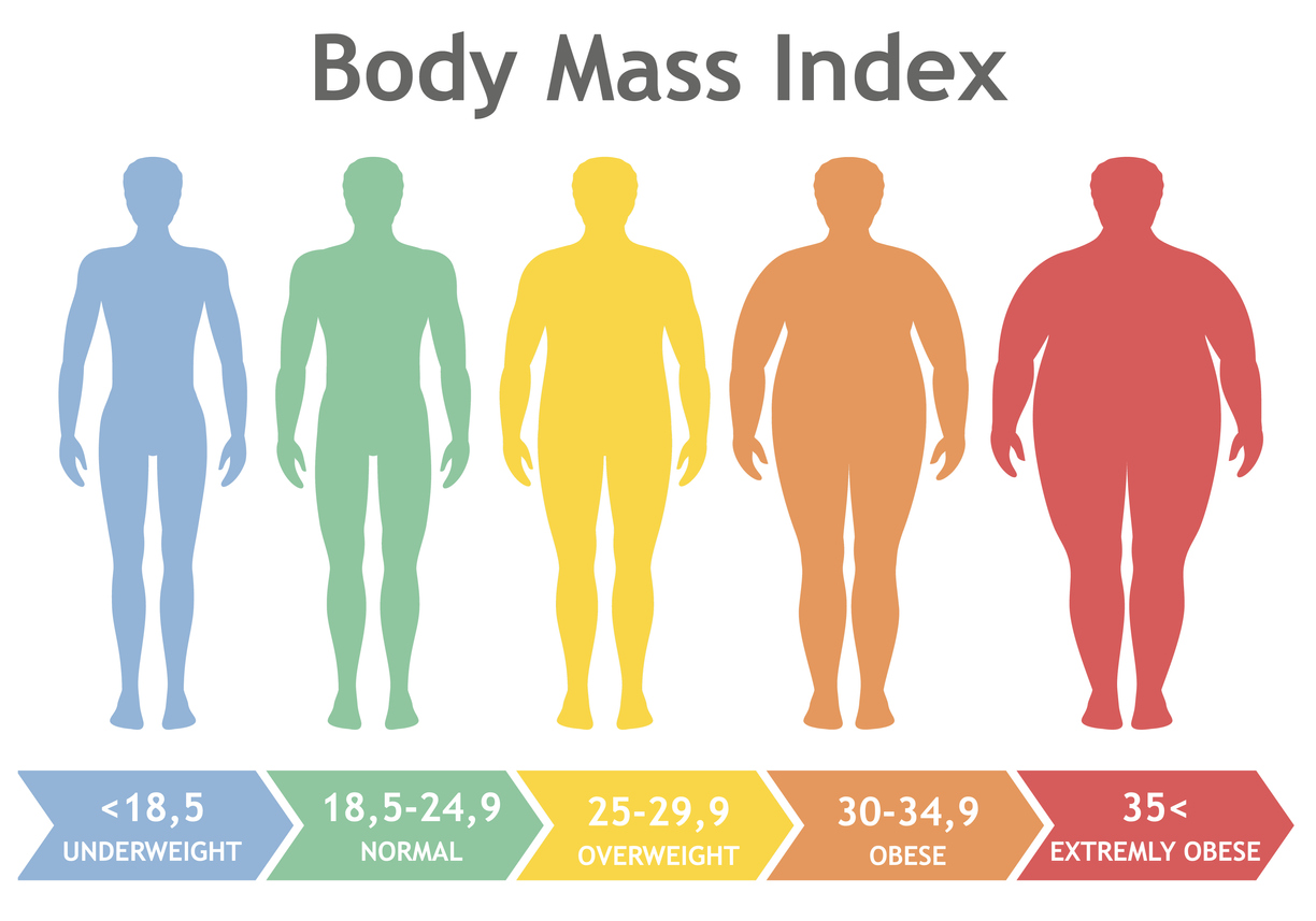 Your BMI percentage shows which category of health you're in