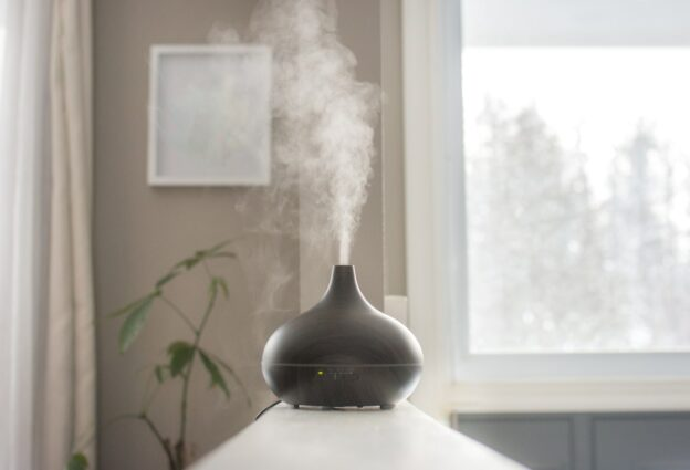 The Best Essential Oils For Purifying Air